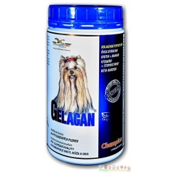 GELACAN® CHAMPION Color - 500 g