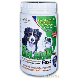 GELACAN® Fast - 5 kg