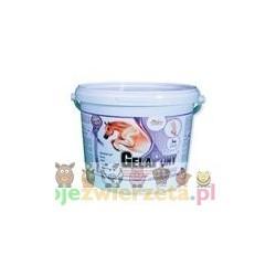 Gelapony® Arthro - proszek - 1800 g