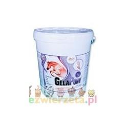 Gelapony® Arthro - proszek - 5400 g