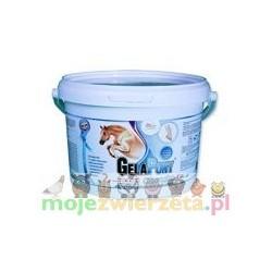 Gelapony® Chondro - proszek - 900 g