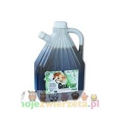 Gelapony® Fast - biosol - 2000 ml